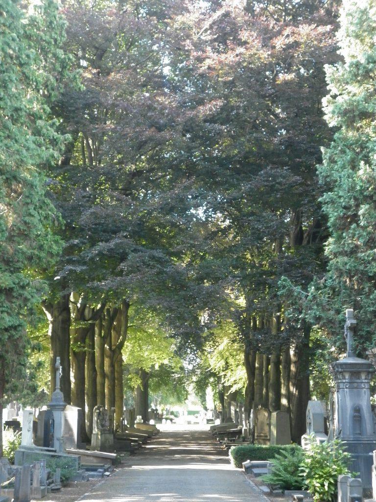 Imagen del cementerio de Maastricht, Holanda.